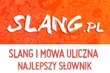 Słownik slangu miejskiego i mowy ulicznej